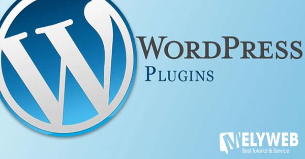 Phát triển plugin WordPress theo yêu cầu